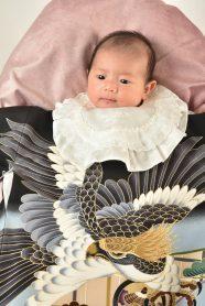 鷹の柄の産着を着た男の子の赤ちゃん