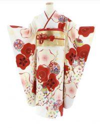 白地に赤色の梅の花が大きく描かれた振袖