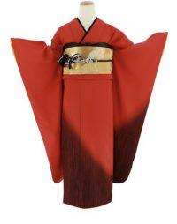 赤色の無地の振袖 金の帯