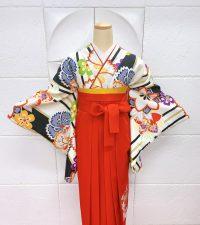 卒業袴着物クリーム地にストライプ撫子桜桔梗柄 赤色袴